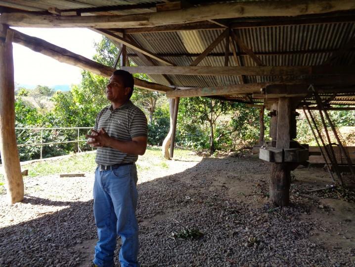 Panama Coffee Farm 8