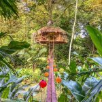 The Coolest Treehouse Lodges In Panama