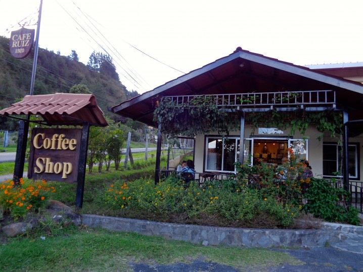 Panama Coffee Farm 13